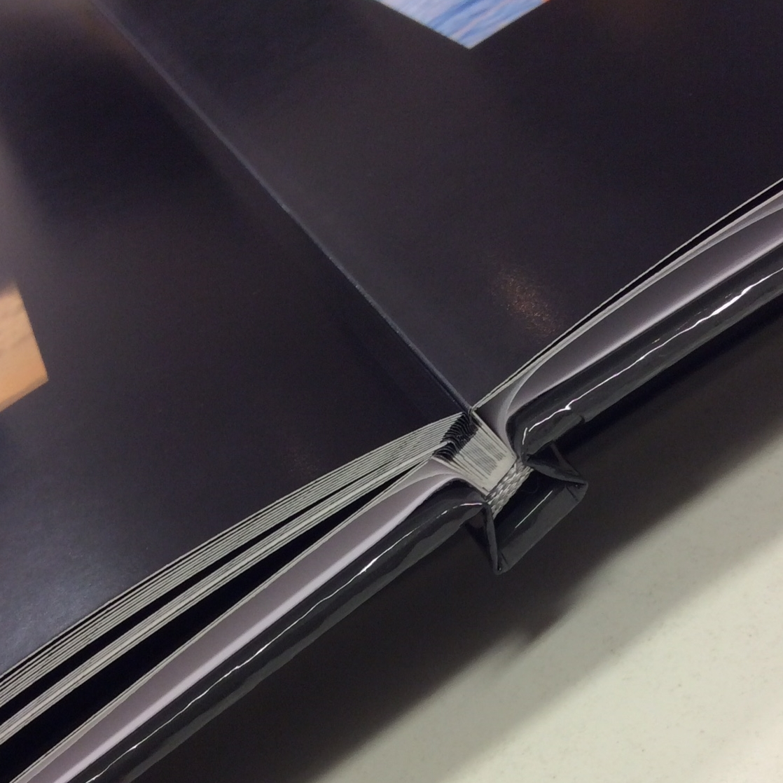 Side view of layflat binding, showing the hinge.